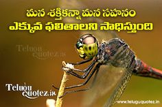 Teluguquotez.in: inspirational motivational pictures in telugu lang...