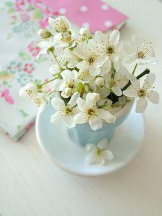sweet berry me's photos on Flickr!  ♥ Aline