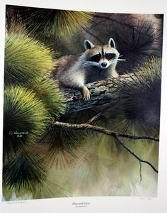 Raccoon Print Limited Edition Ron Holyfield Le s N | eBay