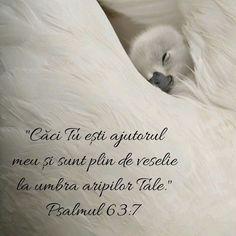 Biblical Verses, Bible Verses Quotes, Bible Teachings, Jesus Loves You, Motivational Words, God Jesus, God Is Good, Spiritual Quotes, Gods Love