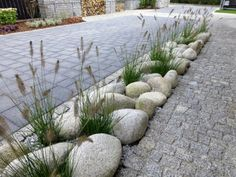 backyard designs – Gardening Ideas, Tips & Techniques Rock Garden Design, Small Garden Design, Garden Landscape Design, Gravel Garden, Garden Paths, Back Gardens, Front Yard Landscaping, Garden Planning, Garden Projects
