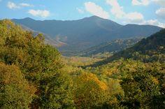The beautiful Smoky Mountains!