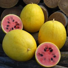Watermelon seeds - Golden Midget (Citrullus lanatus) Non-GMO Heirloom, Certified Organic!Ready to pick in about 65 days