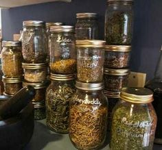 We have a dehydrator but I've never used it for this - think I better buy some jars!   How to harvest and store Herbs from your garden--reason to buy dehydrator