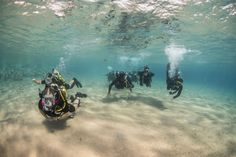 141029-N-CN059-115 GULF OF AQABA (Oct. 29, 2014) Clearance divers from Fleet Diving Unit 3, assigned to Task Group 523.3, and divers from the Royal Naval Force of Jordan, conduct a search dive while participating in International Mine Countermeasures Exercise (IMCMEX). IMCMEX includes navies from 44 countries whose focus is to promote regional security through mine countermeasure operations in the U.S. 5th Fleet area of responsibility. (U.S. Navy photo by Mass Communication Specialist 3rd…