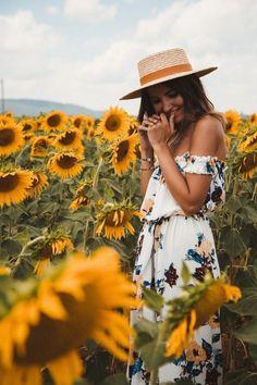 Sunflowers Fields • Tuscany Italy