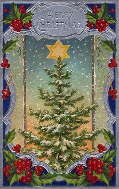 Christmas Tree Postcard 1911