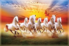Seven running horses painting Premium Quality Cotton fabric Canvas Seven Horses Painting, White Horse Painting, Horse Canvas Painting, Beautiful Horse Pictures, Most Beautiful Horses, Beautiful Wall, Horse Wallpaper, Painting Wallpaper, Wild Horses Running