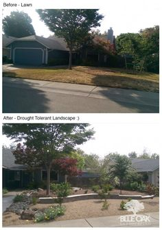 You have heard people talking about making their landscaping drought-tolerant, but you don't know if it's the right move right for you. We think it is and we've put together a few reasons to consider removing your lawn and replacing it with a drought-tolerant landscape design.