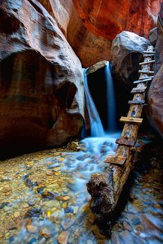 Kanarra  Creek in Canarra Canyon, Zion National Park, Utah, US