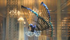 A Danyka Darling - Unique creations in #Dance from Repetto in #Paris. From, http://danykacollection.com