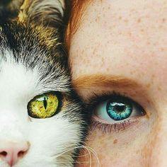 Tag someone who has pretty eyes! Beautiful Eyes Color, Pretty Eyes, Eye Photography, Amazing Photography, Cool Pictures, Cool Photos, Amazing Photos, Iris Eye, Polychromos
