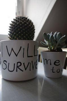 Einzugsgeschenk - I will survive