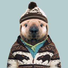 Zoo portraits by Yago Partal, Sea Otter (Pup), Enhydra Lutris