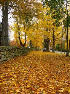 Ridgefield Connecticut Main Street in Autumn