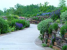 The Island Garden's Living Wall, at Powell Gardens. Powell Gardens, Garden Living, Back Gardens, Botanical Gardens, Places To Visit, Sidewalk, Brick Road, Island, Vacation