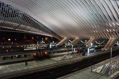 Liège-Guillemins railway station   Train Station Liége-Guillemins #7   Flickr - Photo Sharing!