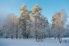 Sognsvann Norway, Snow, Website, Outdoor, Outdoors, Outdoor Games, The Great Outdoors, Eyes, Let It Snow