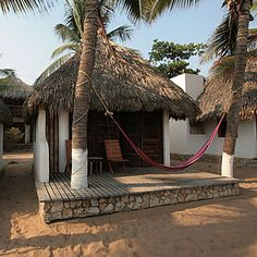 A simple hut on the beach, under a grove of palm trees.