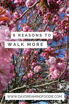 There plenty of reasons to get outside and walk more often. Check out my top 6 reasons to get out and stretch your legs. Maybe embrace a walking lunch? Walking can be a small step towards much better health and better fitness.
