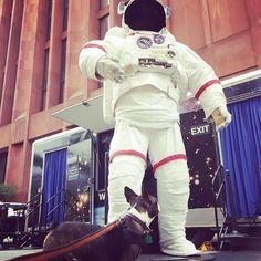 NASA Spaceman #sciencefair #nyu #washingtonsquarepark #nyc #newyork #nycdogs #newyorkdogs #bostonterrier #puppy #dog #nasa #astronaut - http://washingtonsquareparkerz.com/nasa-spaceman-sciencefair-nyu-washingtonsquarepark-nyc-newyork-nycdogs-newyorkdogs-bostonterrier-puppy-dog-nasa-astronaut/