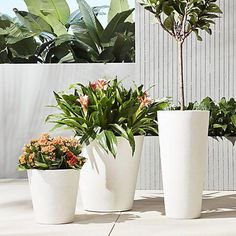 Give everyone green envy with modern planters and garden pots. Shop indoor and outdoor plant holders such as hanging pots, rail planters and more. Black Planters, Stone Planters, Glass Planter, Herb Planters, Modern Planters, Large Planters, Outdoor Planters, Garden Pots, Balcony Gardening