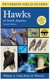Peterson Field Guide- Hawks