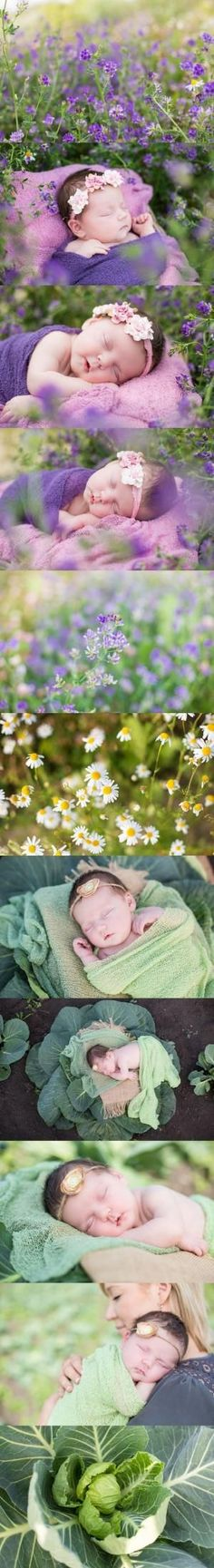 Melanie Bennett Photography|Newborn Photography Outdoor Newborn Photography| Evoking You| Wildflowers| Cabbage Patch| Baby Girl by Dressv-Reviews