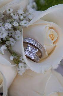 Wedding Rings in the Rose