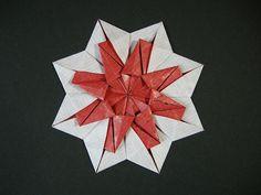 Star-tato from circle