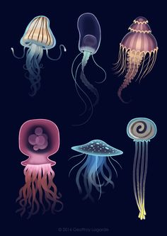 ©Geoffroy Lagarde – Studies for a personnal project – - jellyfish Jellyfish Quotes, Jellyfish Facts, Jellyfish Light, Jellyfish Tank, Jellyfish Drawing, Jellyfish Painting, Jellyfish Aquarium, Jellyfish Tattoo, Watercolor Jellyfish