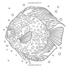 geographic kids coloring pages - photo#42