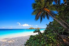 Caribbean Beach View From The Shade by George Oze - Caribbean ...