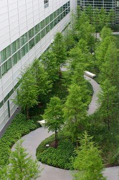OJB, conocophillips-world-headquarters #landscapearchitecturecourtyard