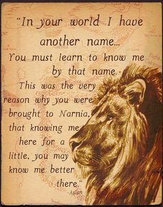 C.S. Lewis, he sure had a way with words and story telling. I love how the story of Narnia and the character Aslan is actually Jesus Christ.    :-)