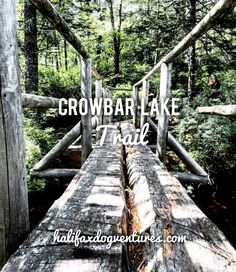 Crowbar Lake Trail in Porters Lake, Nova Scotia, is a scenic and challenging hike that is very dog-friendly. halifaxdogventures.com