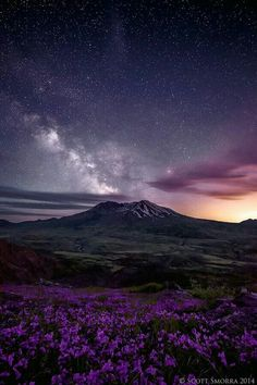 Stars, mountain, flowers
