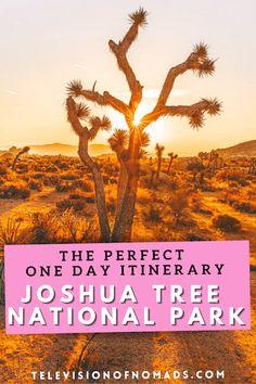Usa Travel Guide, Travel Usa, Travel Guides, Travel Tips, National Parks Usa, Joshua Tree National Park, California Travel, Day Trip, Travel Around The World