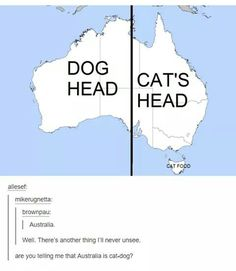Cat-dog, tumblr funny< we're all ignoring the little island that says 'cat food'? // that's tasmania you absolute walnut