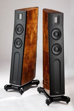 Raidho Acoustics D-2.1 Loudspeakers - Coda Audio Video