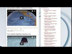 """18/10/16 - Boletín """"La Caracola"""" - Diario de Información del Mar - Aprocean 18/10/16 12:02hs Boletín """"La Caracola"""" D.I.M. - Diario de Información del Mar Aprocean Blog http://aprocean.blogspot.com.es/"""