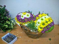 HOYA, s.o v Bratislava, Bratislavský kraj Bratislava, Four Square, Easter, Plants, Easter Activities, Plant, Planets