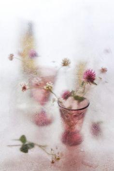Feminine Photography, Texture Photography, Abstract Photography, Still Life Photography, Photoshop Overlays, Photo Texture, Magic Realism, Still Life Photos, Language Of Flowers