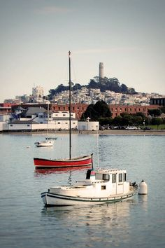 Coit tower from The Bay - San Francisco ... I work in one of those red buildings ;)