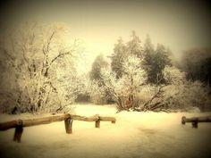 'Winter' von Elke Balzen bei artflakes.com als Poster oder Kunstdruck $18.02