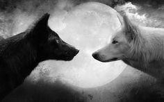 La leyenda de los dos lobos