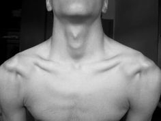 Clavicle♡