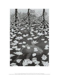 M. C. Escher, Posters and Prints at Art.com