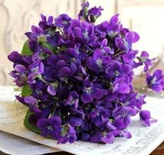 Violet bouquet. Reminds me of the bunch mom picked for me years ago. I have them dried and think of that Kodak memory of my heart. Love you Mom!