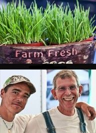 Farmers Markets- support our local farmers